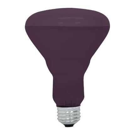 75R30/BLB  GE 22748 75 Watt 120 Volt Incandescent Lamp