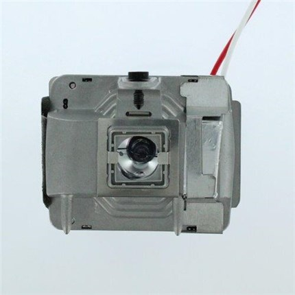 Ask Proxima C310 Replacement Lamp with Phoenix bulb