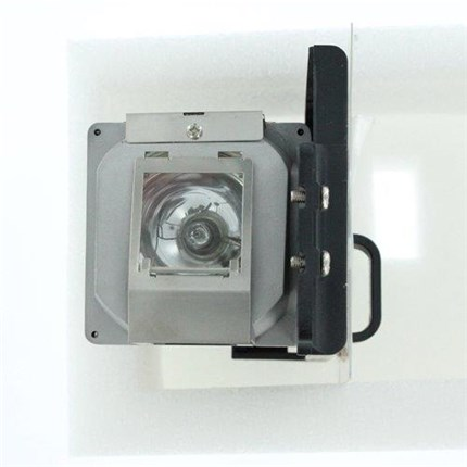 A1200 Replacement Lamp with Philips bulb