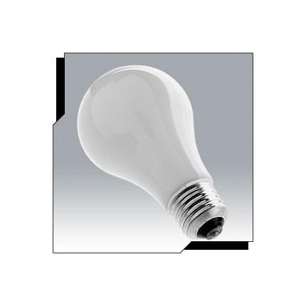 PH213 Ushio 1001269 250 Watt 115 Volt Incandescent Lamp