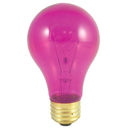 25A/TP Bulbrite 105625 25 Watt 120 Volt Incandescent Lamp