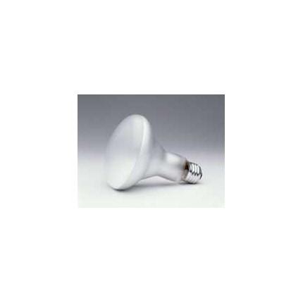 65BR30/FL SYLVANIA15165 65 Watt 120 Volt Incandescent Lamp