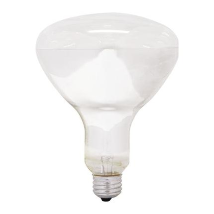 250R40/4 GE 20724 (24 PACK) 250 Watt 120 Volt Incandescent Lamp