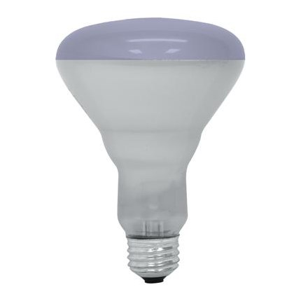 65R30/PL GE 20996 65 Watt 120 Volt Incandescent Lamp