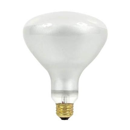 300R/FL GE 21213 (24 PACK) 300 Watt 120 Volt Incandescent Lamp