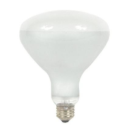 300R/FL GE 21215 (24 PACK) 300 Watt 130 Volt Incandescent Lamp