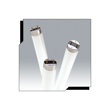 F17T8/841 Ushio 3000261 17 Watt Fluorescent Lamp