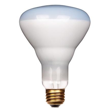 75BR30/Plant Westinghouse 36412 75 Watt 120 Volt Incandescent Lamp