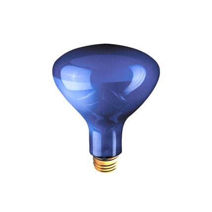 75R30PG Bulbrite 710375 75 Watt 120 Volt Incandescent Lamp