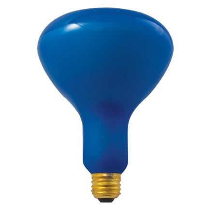 150R40PG Bulbrite 710415 150 Watt 120 Volt Incandescent Lamp