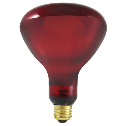 250BR40HR Bulbrite 714125 250 Watt 130 Volt Incandescent Lamp