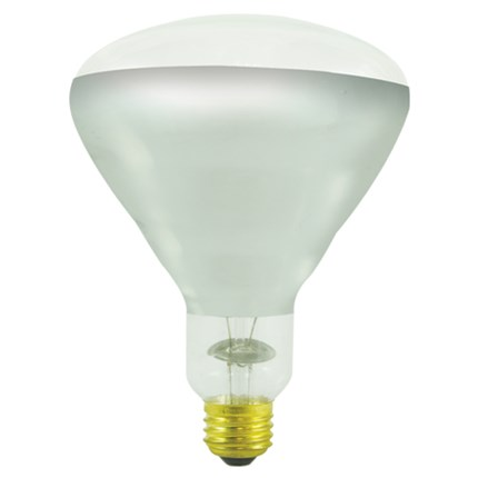 250BR40H/TC Bulbrite 714725 250 Watt 130 Volt Incandescent Lamp