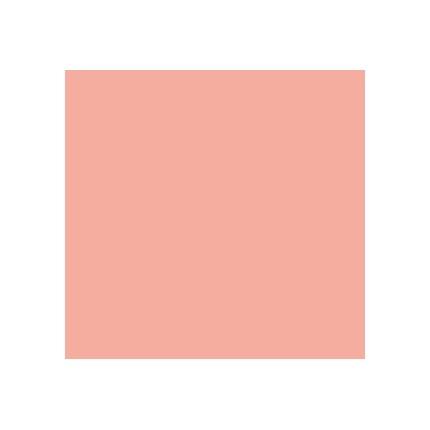 Rosco Cinegel R4630 CalColor 30 Red 20