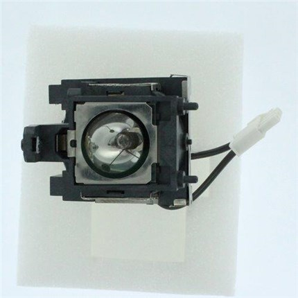 BenQ CS.5JJ1K.001 Replacement Lamp with Philips bulb