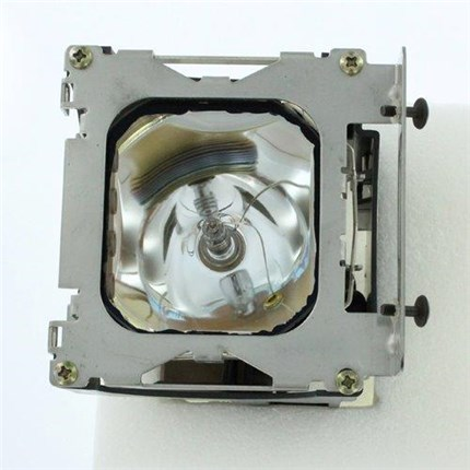 Polaroid PV360 Replacement Lamp with Ushio bulb
