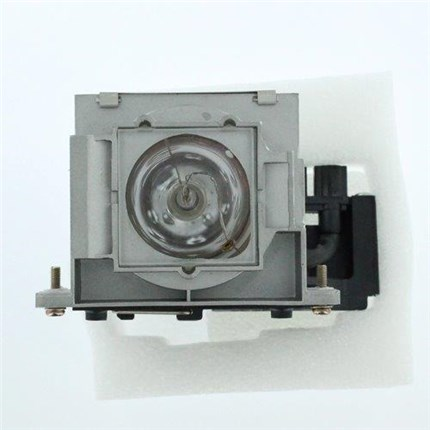 Yamaha DPX-830 Replacement Lamp with Ushio bulb
