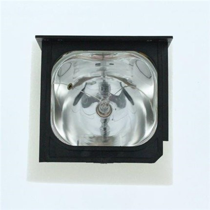 EizoIP420U Replacement Lamp with Philips bulb