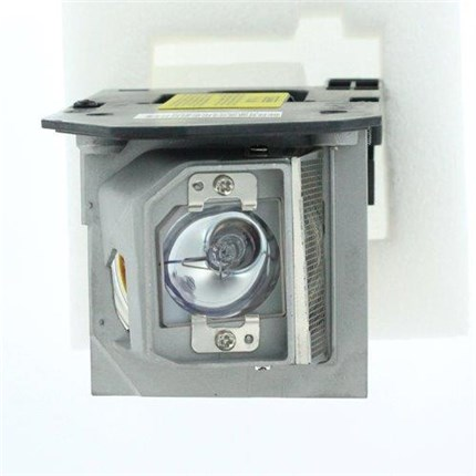 Acer EC.K0100.001 Replacement Lamp with OSRAM bulb