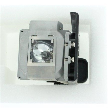 Acer EC.J6100.001 Replacement Lamp with Philips bulb