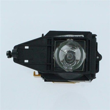 Kodak505-0467 Replacement Lamp with Philips bulb