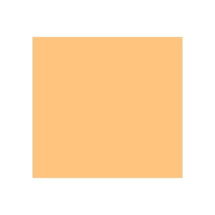Rosco Roscolux R16 Light Amber 20