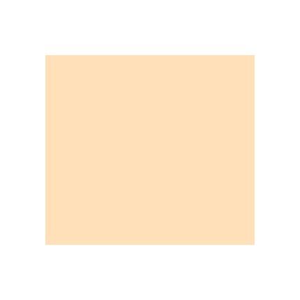 Rosco Roscolux R08 Pale Gold 20