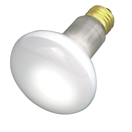30R20 Satco S2810 30 Watt 130 Volt Incandescent Lamp