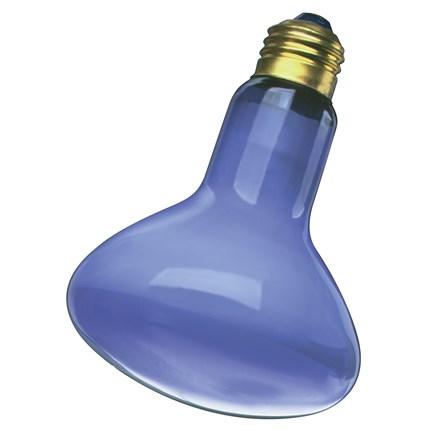 50R20/GRO Satco S2850 50 Watt 120 Volt Incandescent Lamp
