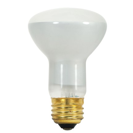 45R20 Satco S3849 45 Watt 130 Volt Incandescent Lamp
