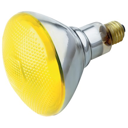 100BR38/Y Satco S4426 100 Watt 120 Volt Incandescent Lamp