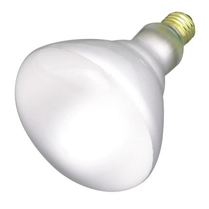 65BR40/FL Satco S4453 65 Watt 130 Volt Incandescent Lamp