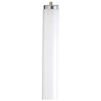 F96T8/741/ECO Satco S6540 59 Watt Fluorescent Lamp