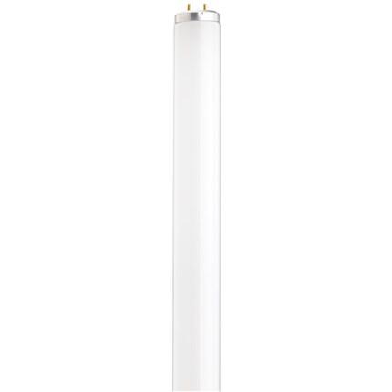 F20T12/CW/TF Satco S6579 20 Watt Fluorescent Lamp