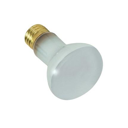 100R20FL/Pool Satco S7001 100 Watt 130 Volt Incandescent Lamp